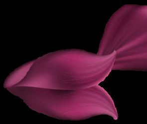 purple-4